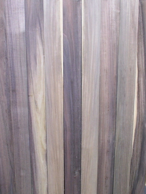 Blue Mahoe From Griffin Exotic Wood