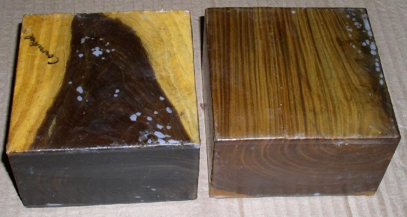 Genuine lignum vitae guiacum officinale from griffin